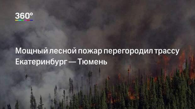 Мощный лесной пожар перегородил трассу Екатеринбург— Тюмень