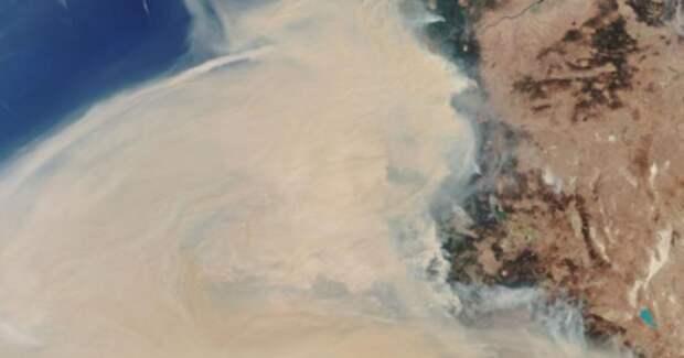 Дым от лесных пожаров над США разглядели из космоса