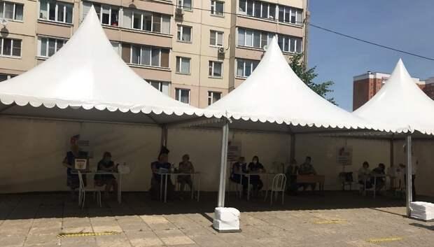 В Подольске поступило 6 тыс заявок для голосования на дому по поправкам в Конституцию РФ