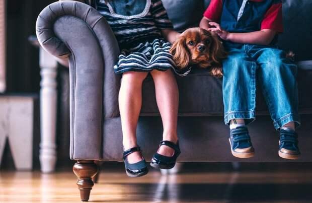 children-1866531_1280-1024x666 Устранение пятен с мебели: полезные советы