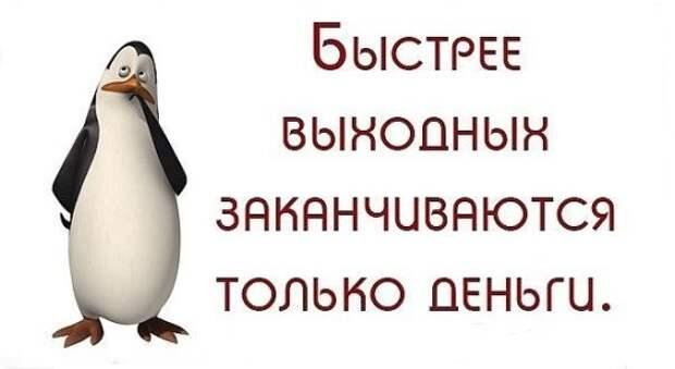 Смеялся, когда прочитал, что обезьяны всегда выбирают предмет, отличающийся от других...