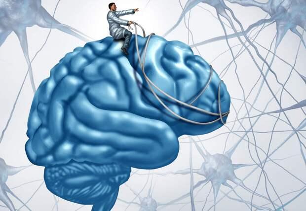 Как надежда защищает мозг