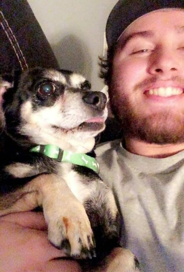 Вот Джаспер смотрит телевизор со своим новым папой в мире, животные, люди, преданность, приют, собака, спасение