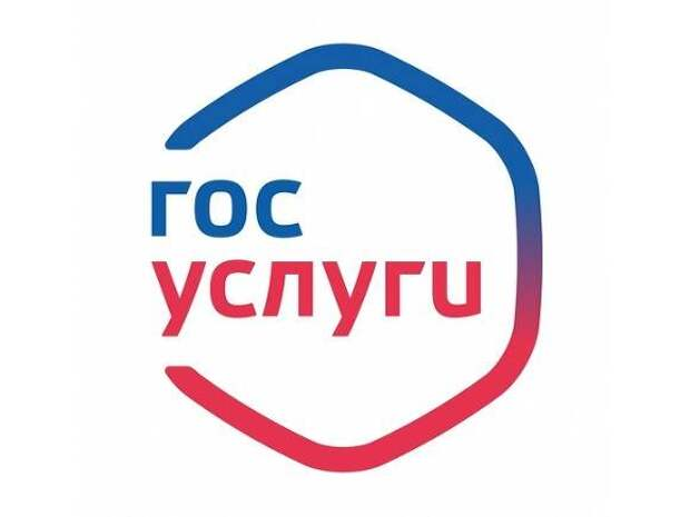 Петербургские депутаты попросили Роскомнадзор запретить «Единой России» использовать сайт госуслуг для праймериз