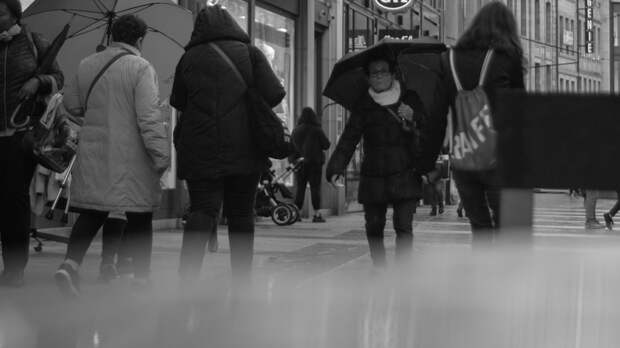 Дождливыми будут праздничные выходные в Ростовской области