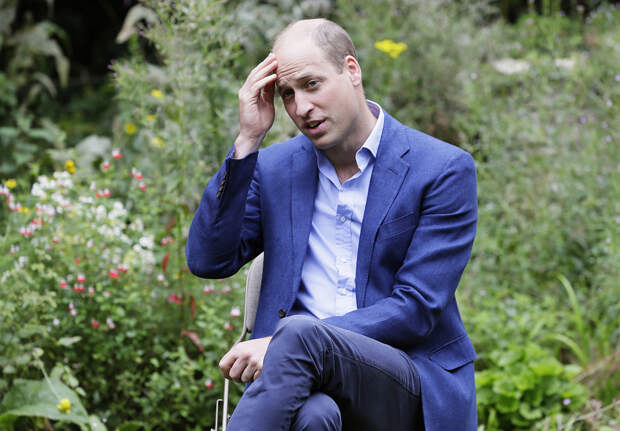 Принц Уильям садоводство