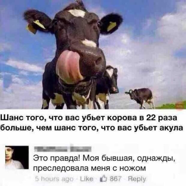 1462824768_kommenty-3