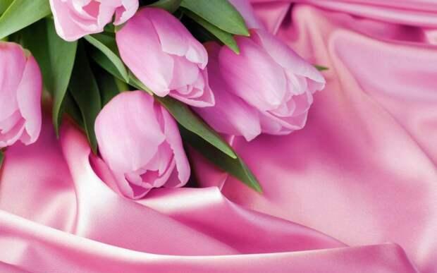 цветы/фото:pixabay.com