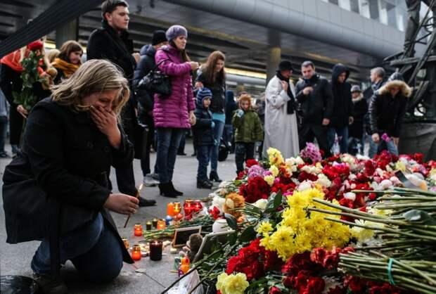 «Сад памяти»: В Ленобласти установят мемориал жертвам авиакатастрофы А321 над Синаем