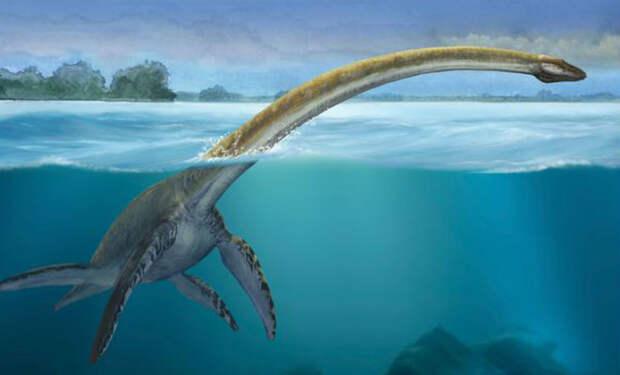 Ученые показали лох-несского монстра: останки похожего существа нашли в Антарктиде