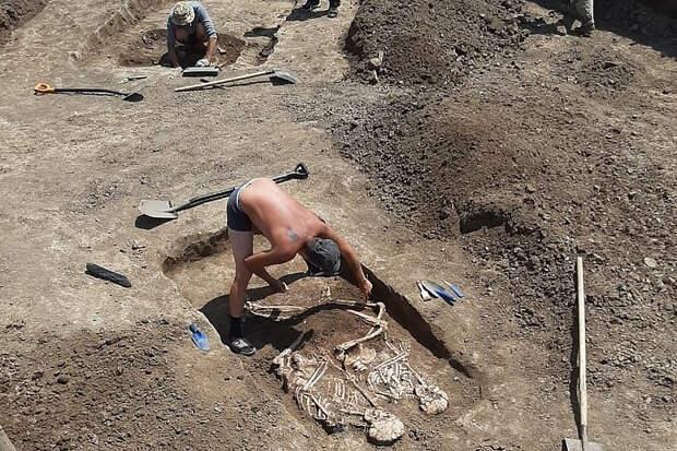 В Краснодарском крае нашли погребение возрастом более 4 тысяч лет