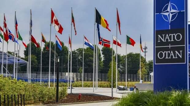 Кедми: Вступление Украины в НАТО — плод фантазии недоразвитого Блинкена