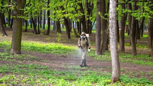 В Рязани парки обработали от клещей