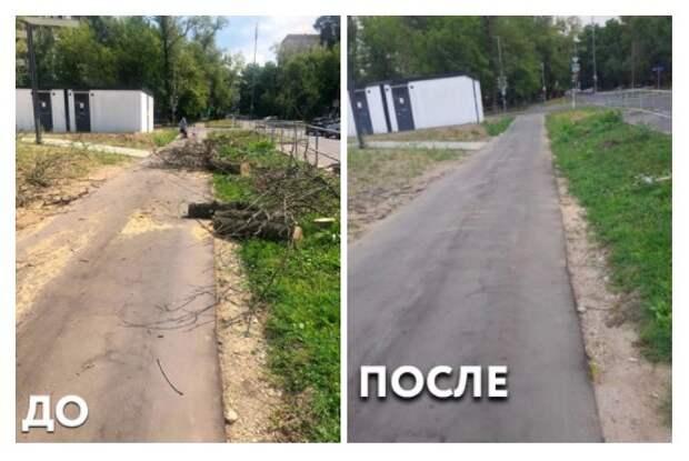 На улице Менжинского убрали спиленные деревья
