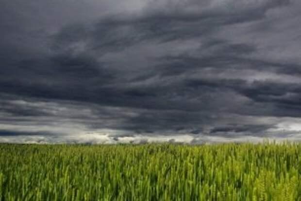 Погода на 27 сентября: пасмурно