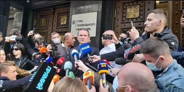 Скубченко: Уголовные дела в отношении Медведчука – мышиная возня