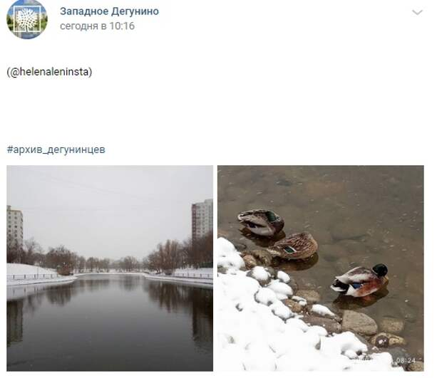 Фото дня: Дегунинский пруд год назад