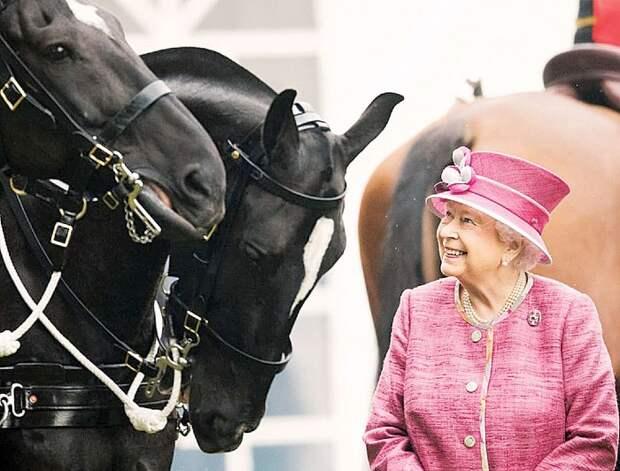 Чем отличаются самые популярные семьи монархов
