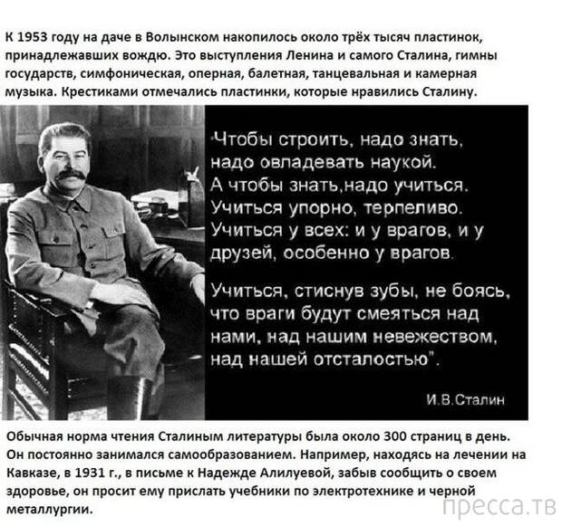 """Мифы об """"эффективном менеджере"""" Сталине"""