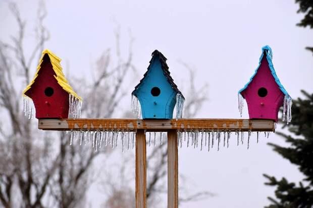 До +3 градусов потеплеет в Удмуртии в понедельник