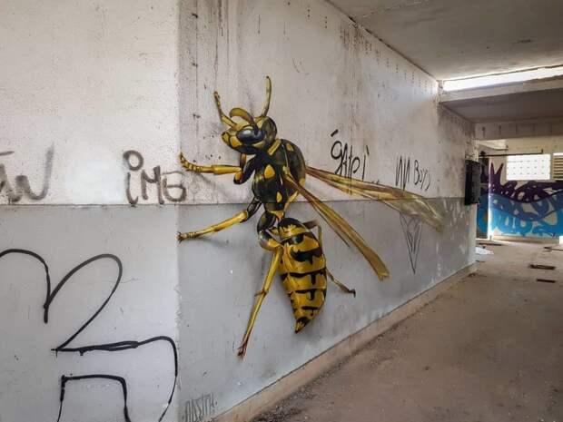 Художник рисует гигантских насекомых на стенах, которые пугают прохожих