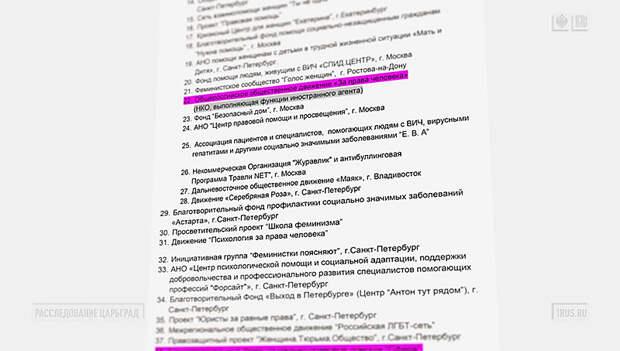 Как Запад поставляет депутатов в Госдуму: жёсткие истории Оксаны Пушкиной