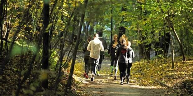 В парке «Северное Тушино» возобновились пятикилометровые забеги