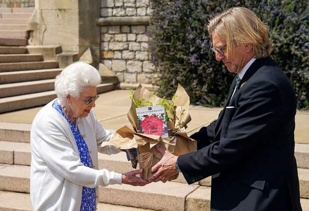 Елизавета II посадила розу в честь столетия её покойного мужа принца Филиппа