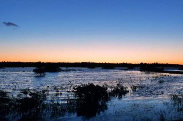 В Вологодской области затонул катер