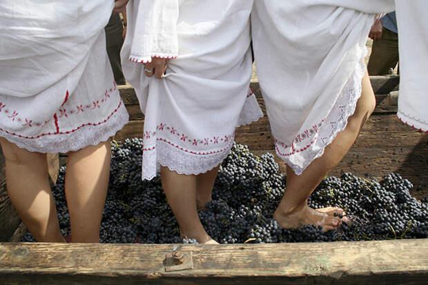 Традиционный способ выжимания виноградного сока