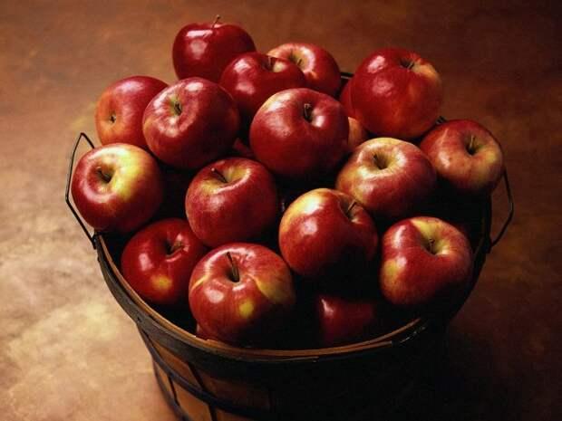 Ведро с яблоками. Притча Будьте добрее, притча