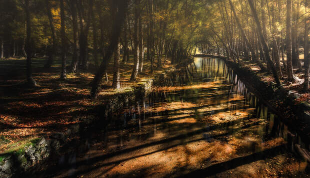 Golden Creek by Paulo Costa on 500px.com