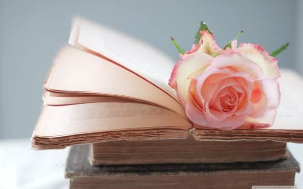 rose_book-wallpaper-1280x800