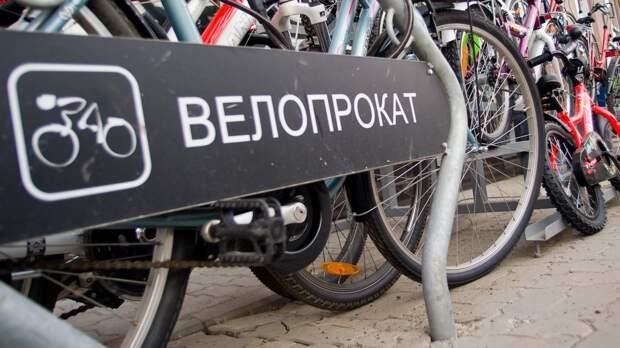 Общегородской велошеринг Петербурга может появиться в Ленобласти