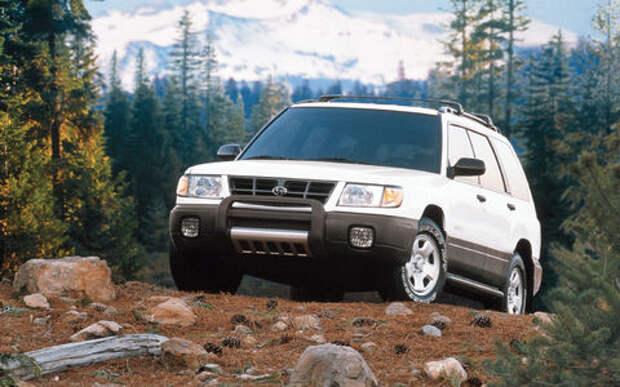 Медведь угнал старенький Subaru Forester и устроил погром