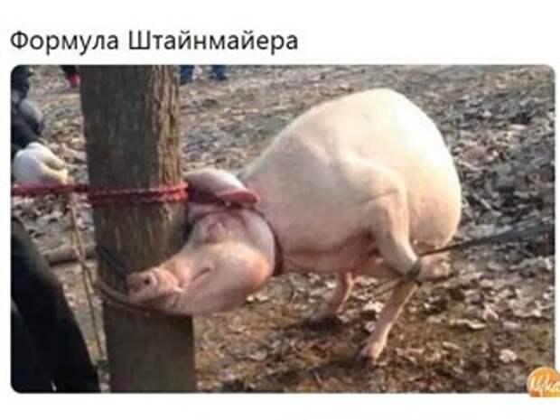 Денацификация — путь Украины к нормальной жизни?