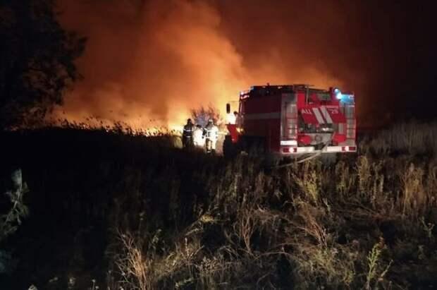 За сутки площадь лесных пожаров в России увеличилась почти на 14%