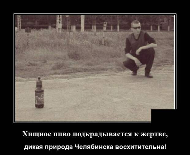 Демотиватор про Челябинск