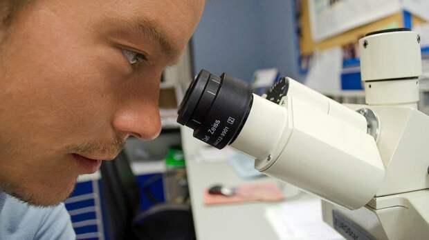 Ученые Мичиганского университета обнаружили «второй мозг» в кишечнике человека