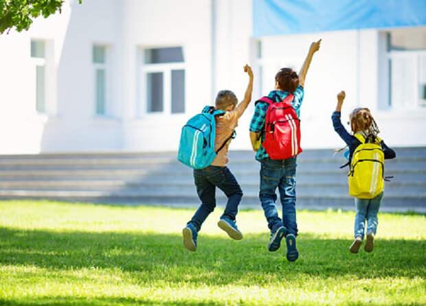Минпросвещения: учебный год в российских школах не будет закончен досрочно