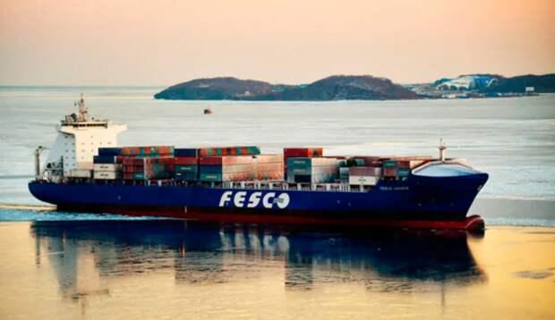 Выручка группы Fesco по МСФО в 2020 году выросла примерно на 9% - гендиректор
