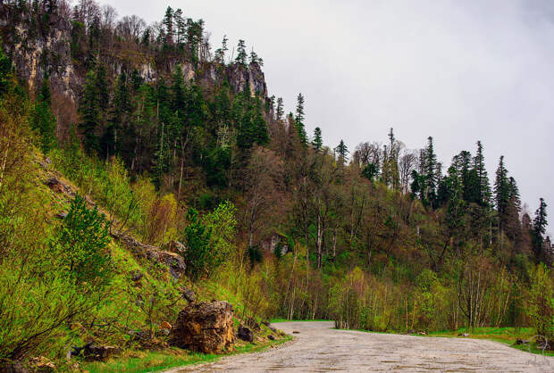 Плато Лаго-Наки на Западном Кавказе