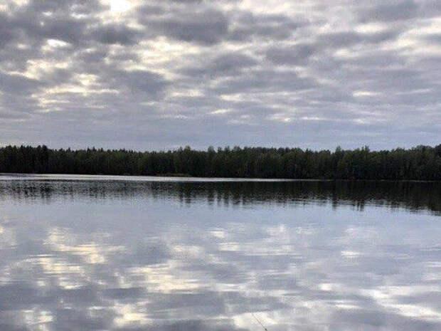 «Через год-два озеро Ургун превратится в болото»: экологи обвинили УГМК в разрушении памятника природы