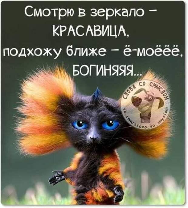 5402287_1425214673_voskresnovesenniefrazyvkartinkah17 (500x553, 32Kb)