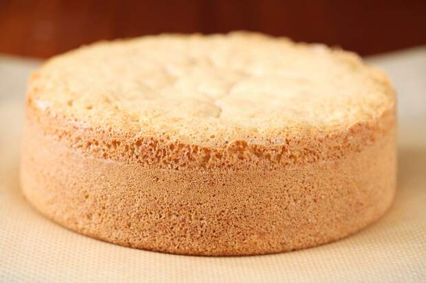 коржи на торт с маком