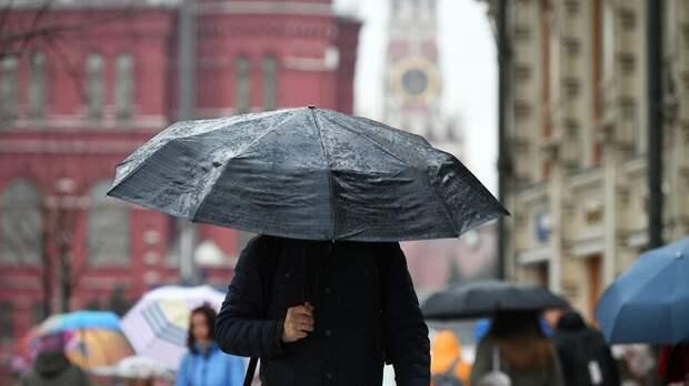 В Москве за сутки выпало более 25% месячной нормы осадков