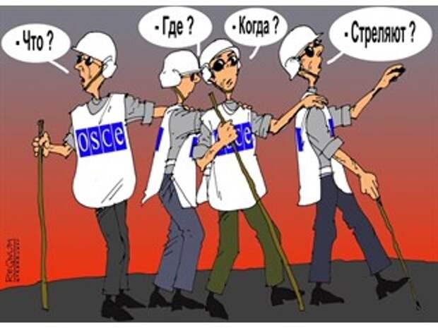 ОБСЕ не предотвратит войну в Донбассе: у её Миссии там другие задачи