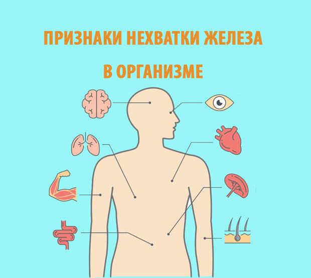 Признаки нехватки железа в организме