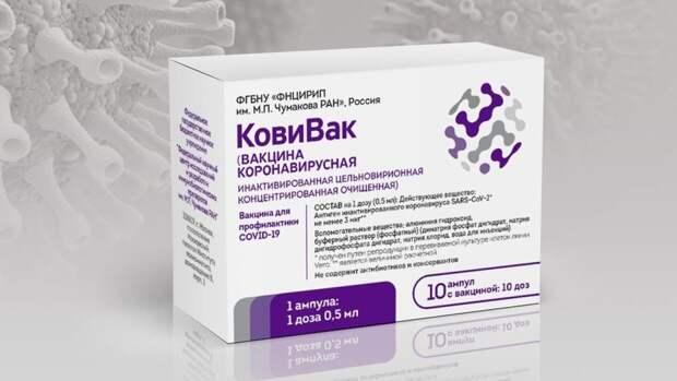 """Первые партии вакцины от коронавируса """"КовиВак"""" доставили в российские регионы"""