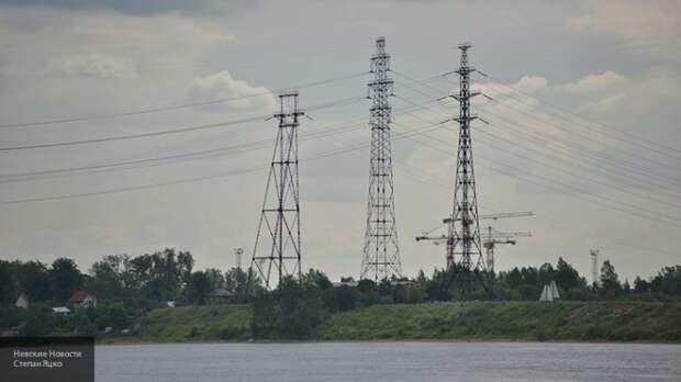 Украина создаст рынок национальных энергоресурсов на основе помета кур